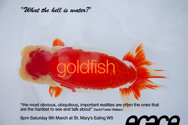 grace goldfish flyer